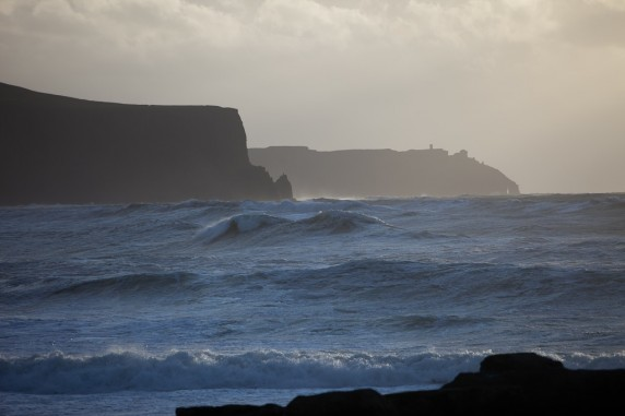 The Cliffs of Moher As Seen by an Ocean Side Cow (from the North in Doolin, Ireland, Looking South)