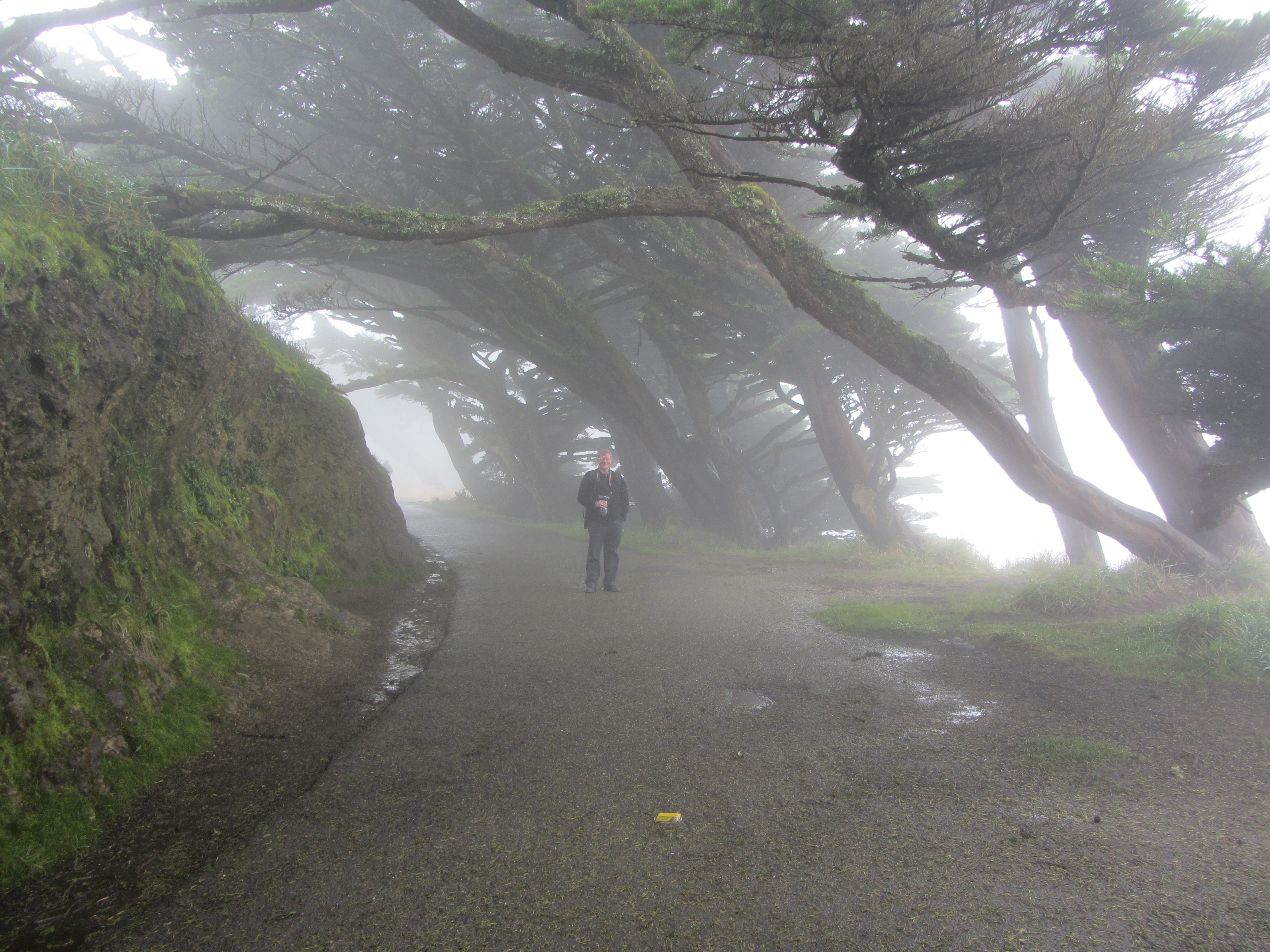 Tim in Fog at Point Reyes