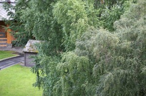 The corner of the cabin Edvard Grieg used for composing Peer Gynt