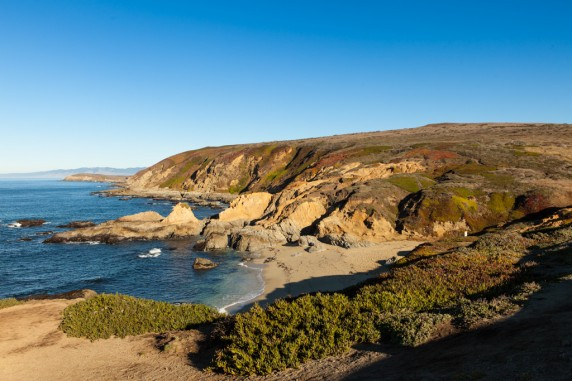 Bodega Head North