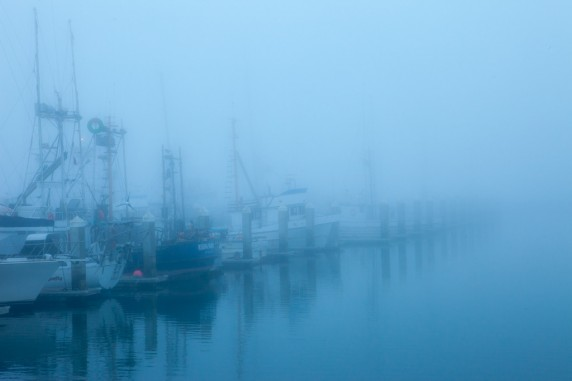 Harbor Disappears in the Fog