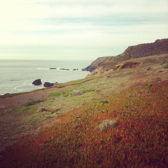 Marin Headlands Wilderness